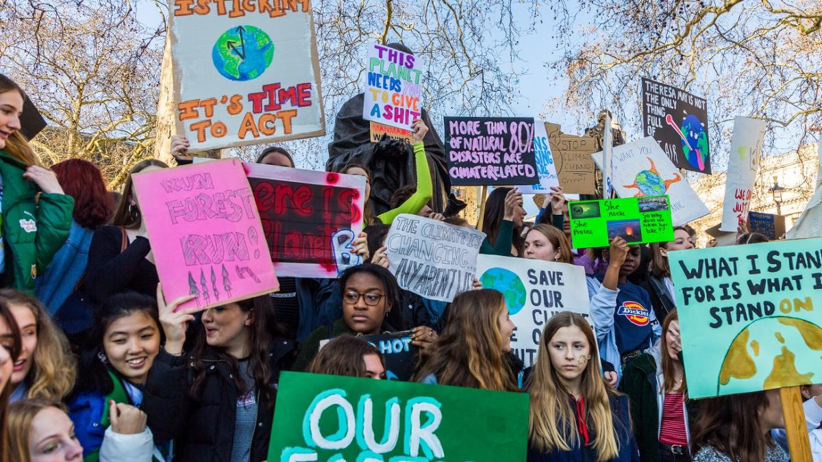 12 of the most powerful climate change placards from the schoolchildren's strike
