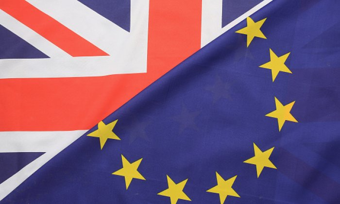 EU Referendum: Expert explains why you shouldn't take the polls at face value