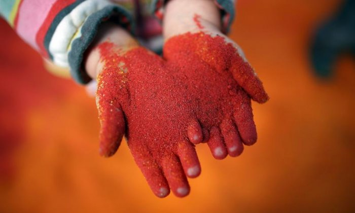 Multicoloured sand, cycling and Brian May - The Diversity Paper Review
