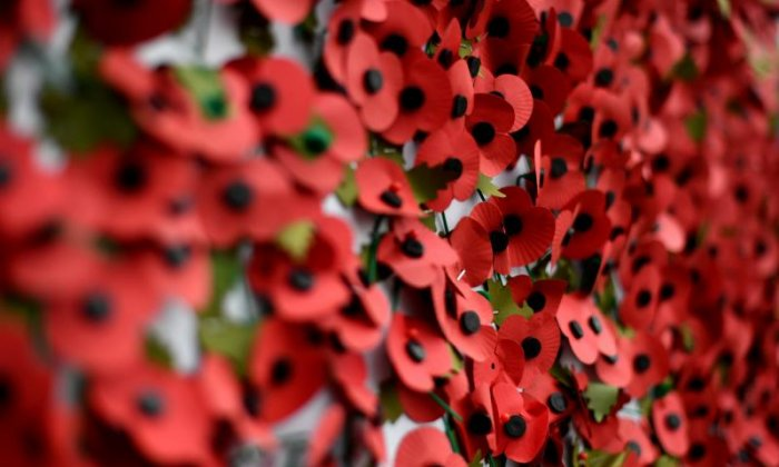 The English FA was fined after Fifa took issue with several poppy displays during the Scotland match