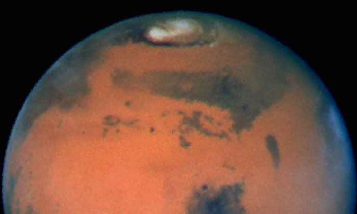Nasa say if a human colony lived on Mars it would probably be wiped out quickly