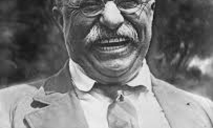Theodore Roosevelt - 'Criminals should be sterilised and feeble-minded persons forbidden to leave offspring behind them'