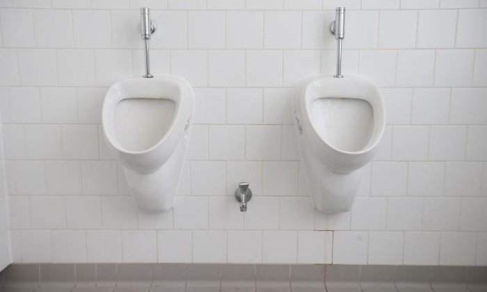 Man arrested after three years of living above a public toilet in Japan