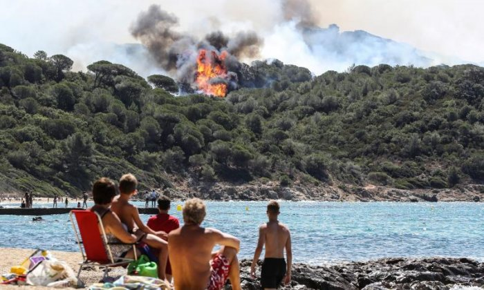 People on a beach observe a forest fire