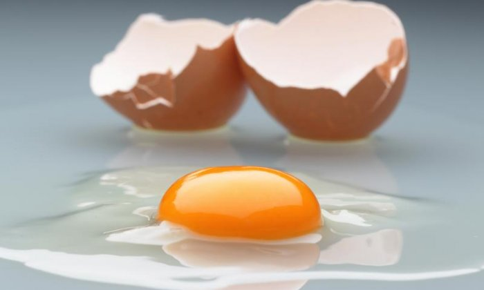 Fibronil egg contamination scare: 'British produce isn't a problem at all', says Egg Industry Council Chair