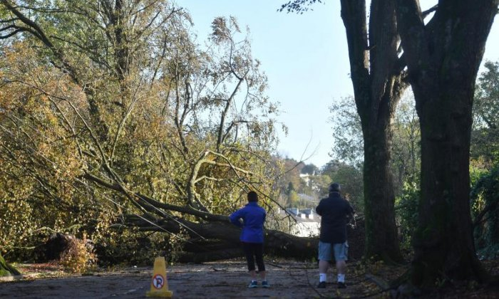 Thousands left without power as Storm Ophelia recovery operations continue in Ireland