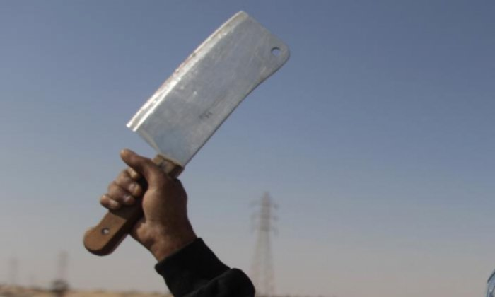 Palestinian arrested for 'carrying meat cleaver, knife and Quran intended for terror attack'
