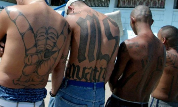 MS-13: The shocking story of the gang accused of beheading a man and ripping his heart out