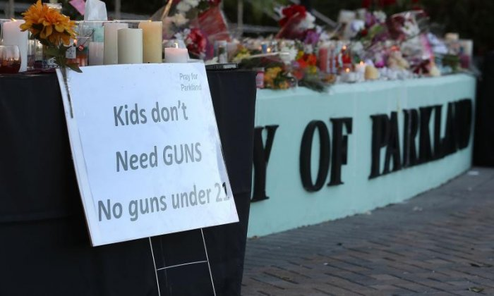 Many have suggested ideas to improve gun control