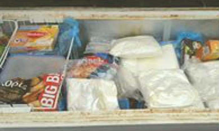 A snapshot of the amphetamine found in the freezer
