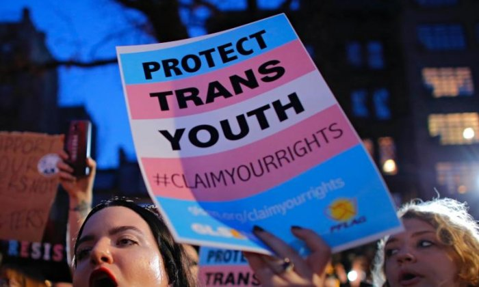 'Children are being pushed down the route of being transgender', says social theorist