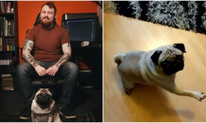 Man who trained dog to 'Nazi' salute is fined
