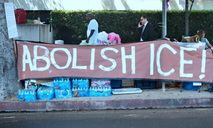 The right side of the pond: 'Abolish ICE Democrats will send voters Trump's way'