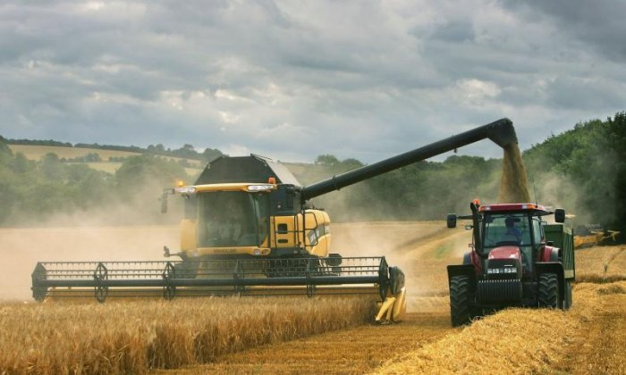 EU subsidies: What will happen to farming produce after Brexit?