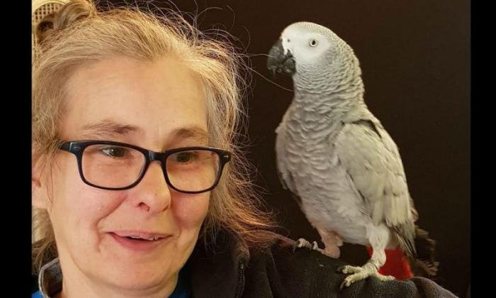 Parrot uses owner's Amazon Alexa to play music, order watermelon, lightbulbs