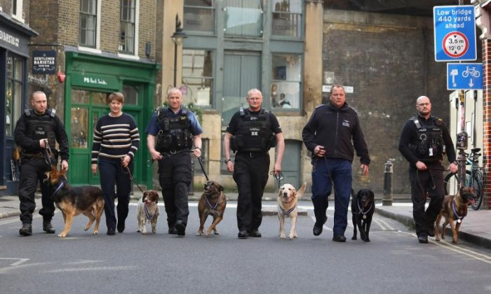 Police dogs to receive awards for response to London terror attacks