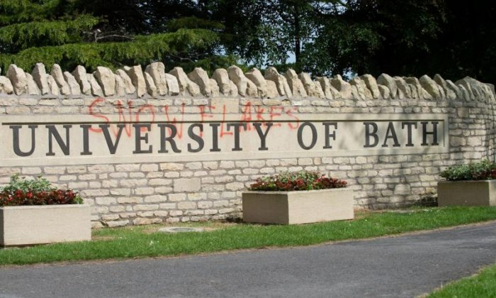 Vandals deface university sign with 'snowflakes'