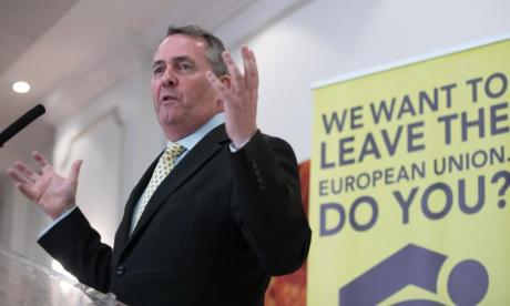 'Someone who campaigned to leave would have more credibility in negotiation', says Conservative leadership candidate Liam Fox