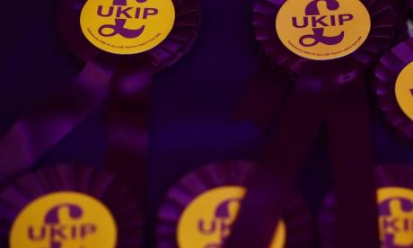 'We are going to step into the shoes of the old Labour party', says UKIP leadership candidate Elizabeth Jones