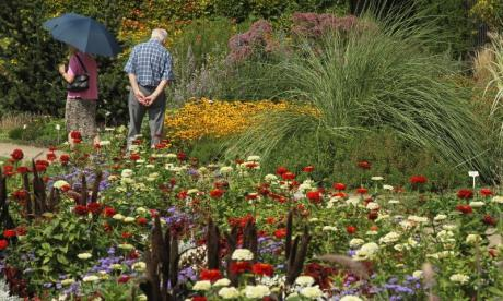 The Big Debate on gardens: 'Why is it gardeners get their own question time on radio 4 when plumbers don't?'