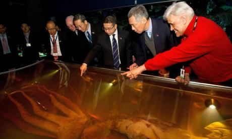 Vladimir Putin's deadly secret weapon: a 14ft squid