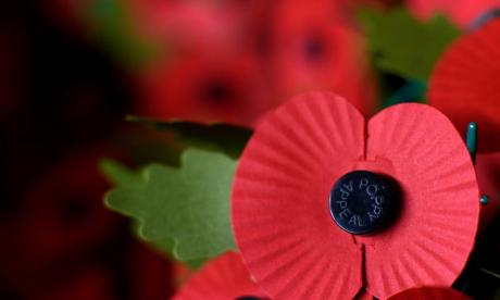 'I'd like to give individuals at Fifa who banned poppies a tiny slap round the head', says Godfrey Bloom