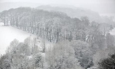 'It's flake news' - Twitter reacts to snow falling in the UK