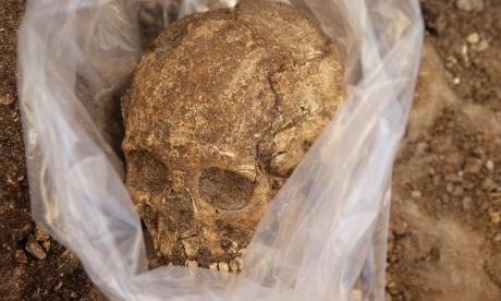 Evidence of cannibalism dating back 10,000 years found in ancient Spanish cave