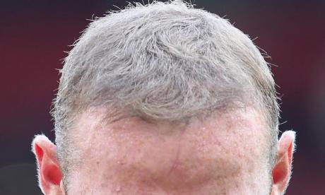 The Big Debate on heads: 'The head is basically the body's lid'