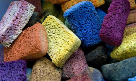 The Big Debate on sponges: 'sponge haters should be locked up in sponge dungeons - spungeons'