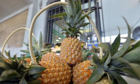 Reading and Leeds: 'Pineapples may be banned due to a corporate deal'