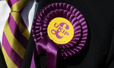 Potential UKIP leadership candidate dubbed 'too extreme'