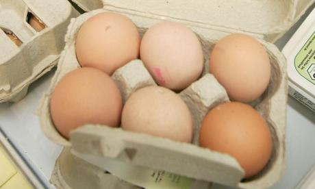 Egg scandal: 'The real issue is criminal activity', says Institute for Global Food Safety