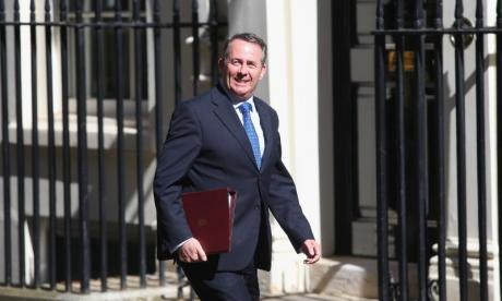 Brexit: 'Liam Fox's playing like a Millwall fan from the 70s', says Pro-EU group chair