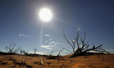 Mother and son survive with no food in Australian outback for 10 days