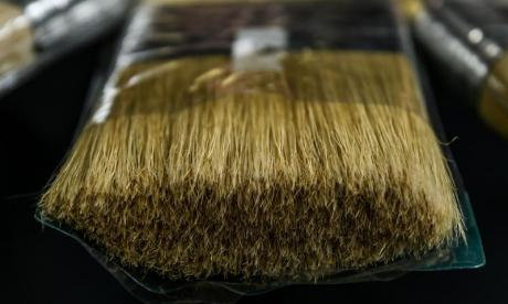 Listen to the Big Debate on bristles