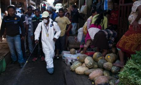 World Health Organisation warns of airborne plague in Africa