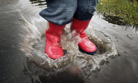 The Big Debate on puddles: 'When was the last time you heard of a puddle splashing itself into a plant pot?'