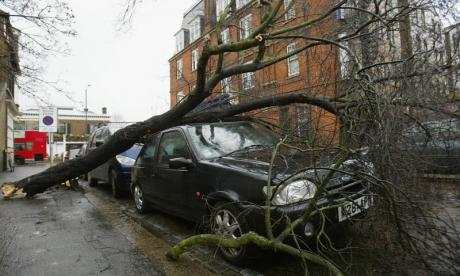 'Wheelie bins dancing down the street' - Storm Eleanor hits the UK