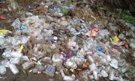 Theresa May has vowed to eliminate plastic waste within 25 years