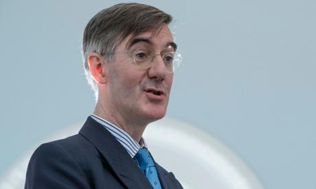 Jacob Rees-Mogg: : 'There are a few cave-dwellers in the House of Lords who are committed to opposing Brexit.'