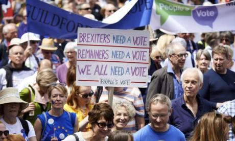 Labour would be in 'severe trouble' if it backs second Brexit referendum, says Leave campaigner