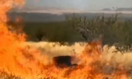 Baby gender reveal explosion starts huge Arizona wildfire