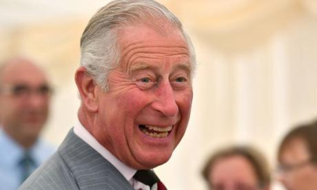 Prince Charles will not 'meddle' when he is king