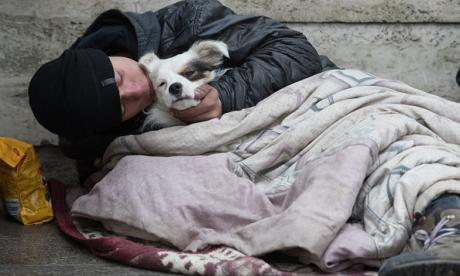 Homeless man and dog