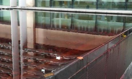Two demonstrators arrested after protest filled Home Office pool with 'blood' over deportation flights
