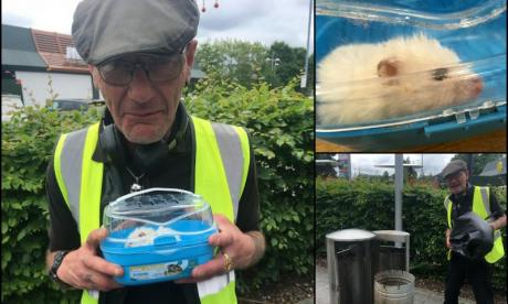 Binman saves hamster who was thrown in bin and left to die